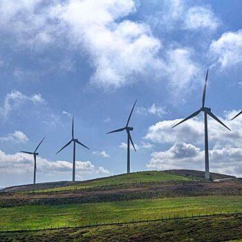 Foto parques eólicos